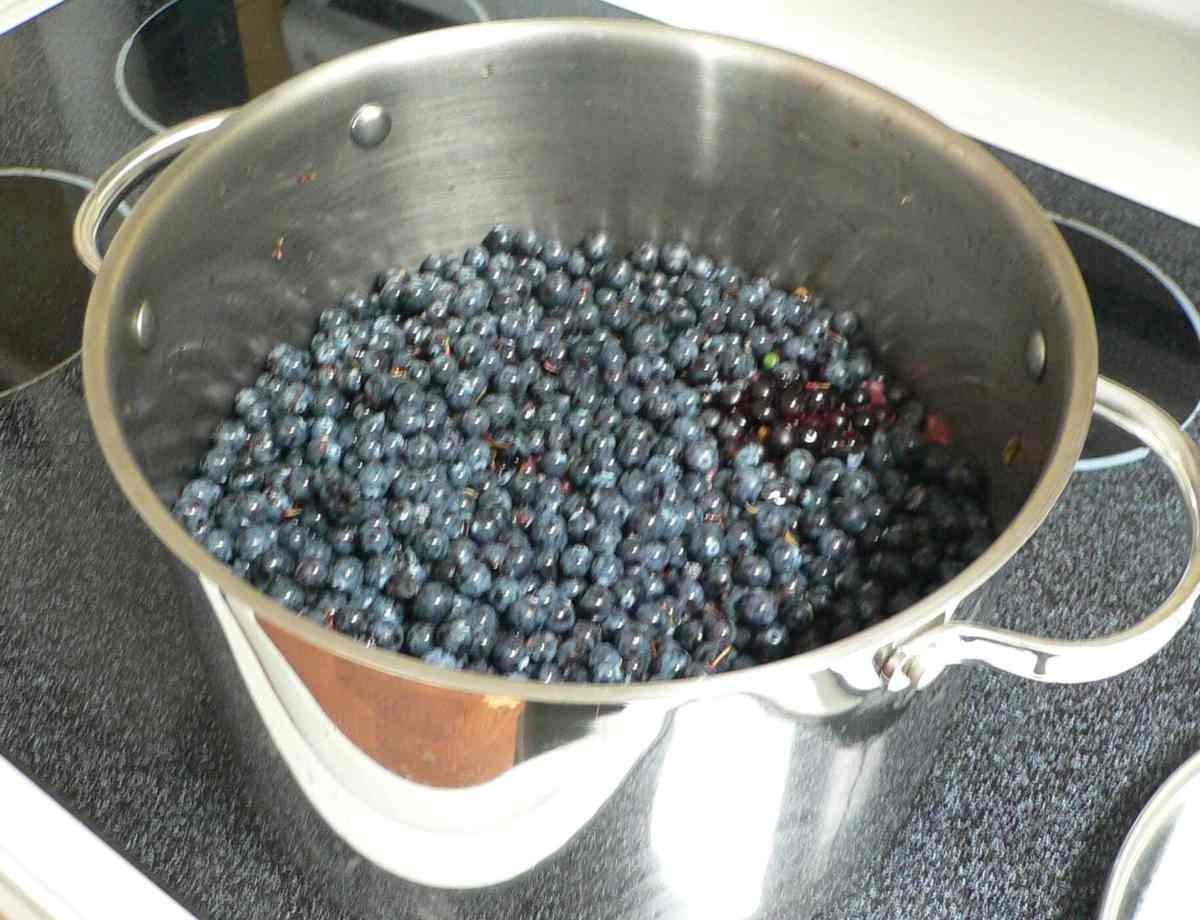 Making oregon grape jam Jam without boiling easy made flavorful